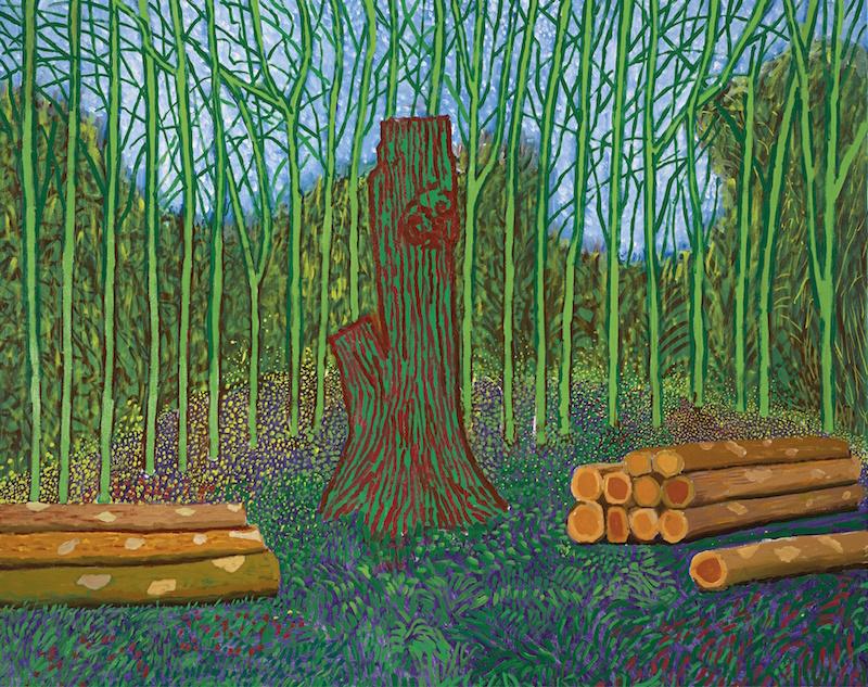 David-Hockney-Arranged-Felled-Trees-2008