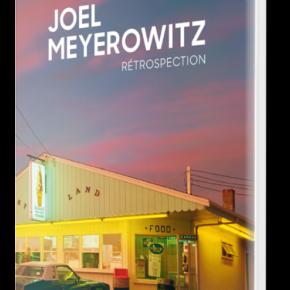 Joel Meyerowitz, Rétrospection